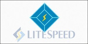LiteSpeed Cache Review
