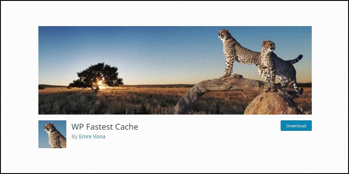 WP Fastest Cache (Pro) Review